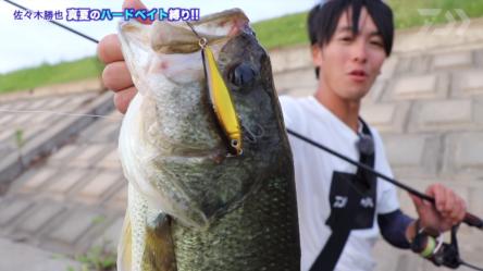 佐々木勝也プロによる真夏の霞ヶ浦水系攻略動画