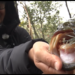 金森隆志プロが早春の野池を吊るしの釣りで攻略!!