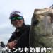 山下哲史プロが春の琵琶湖でキャストすべきルアーを紹介!!