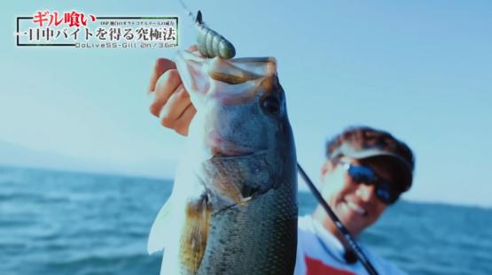 三宅貴浩プロが琵琶湖をドライブSSギルで攻略!!