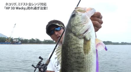 HP3Dワッキーで琵琶湖の全レンジを攻略!!