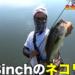 秋の五三川をフィネス&巻物で攻略!!