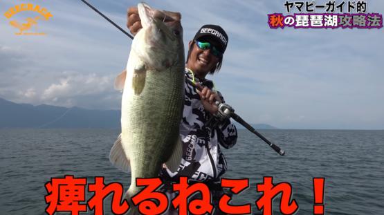 秋の琵琶湖北湖をイモリッパー95やステルス7で攻略!!