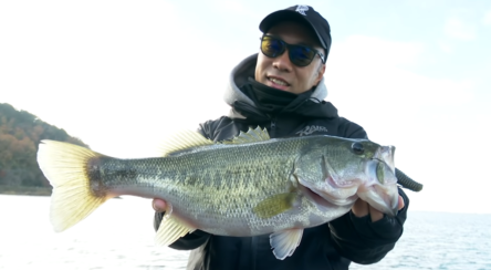 冬の琵琶湖での数釣りからデカバス狙いまで!!