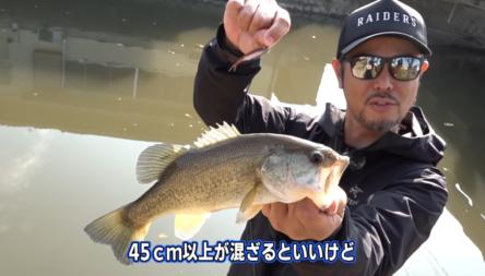 金森プロ&岡プロが五三川をフィッシュローラー等で攻略!!
