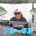 スポーニング後期の琵琶湖南湖バスの探し方!!
